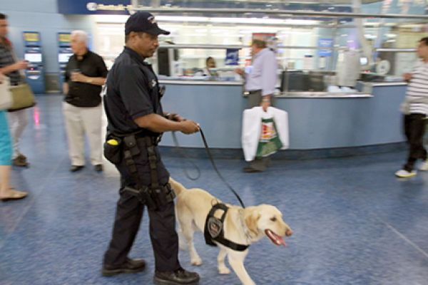 APD K-9 Team at New York Penn Station