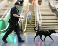 APD Canine Officer at New York Penn Station