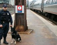 APD K-9 Officer at Washington Union Station